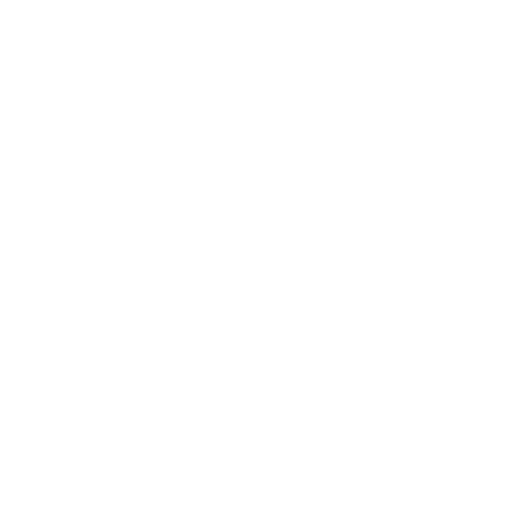 wordpress icon