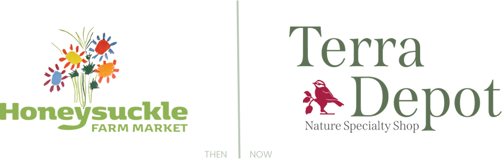 Before and after of Terra Depots logo redesign